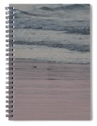 Pink Sky Reflections In The Sand Spiral Notebook