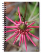 Pink Spikes Spiral Notebook