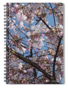 Pink Spring Blossoms Spiral Notebook