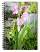 Pink Spring Bulb Spiral Notebook