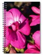Pink Spring Florals Spiral Notebook