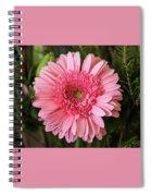 Pink Stunner Spiral Notebook