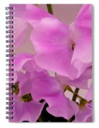 Pink Sweetpeas Spiral Notebook
