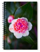 Pink Tenderness Spiral Notebook