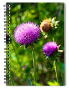 Pink Thistle Study 1 Spiral Notebook