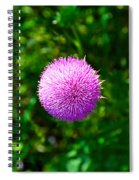 Pink Thistle Study 2 Spiral Notebook