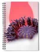 Pink Through The Poppy Spiral Notebook