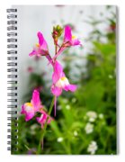 Pink Toadflax Spiral Notebook
