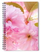 Pink Tree Blossoms Art Prints Spring Blossoms Baslee Troutman Spiral Notebook