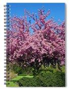 Pink Tree Spiral Notebook