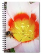 Pink Tulip Flower Orange Art Prints Honey Bee Baslee Troutman Spiral Notebook