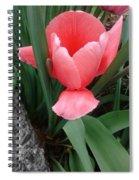 Pink Tulip Spiral Notebook