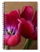 Pink Tulip Pair Spiral Notebook