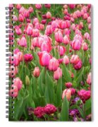 Pink Tulips At Floriade In Canberra, Australia Spiral Notebook