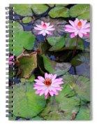 Pink Water Lilies Spiral Notebook