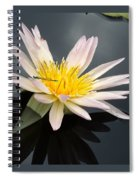 Pink Water Lily With Dragonfly Spiral Notebook