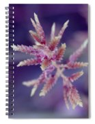 Pink Weed Spiral Notebook