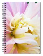 Pink White Dahlia Flower Soft Pastels Art Print Canvas Baslee Troutman Spiral Notebook