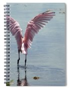 Pink Wings Spiral Notebook