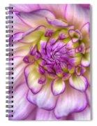 Pink Zinnia Close Up Spiral Notebook