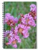 Pinkish Red Flower Bloom Close Up Spiral Notebook
