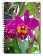 Pinkishyellow Orchid Spiral Notebook