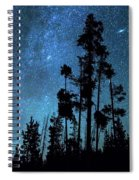 Pinnacle Of The Forest  Spiral Notebook