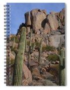 Pinnacle Peak Landscape Spiral Notebook