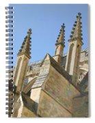 Pinnacles Spiral Notebook