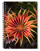 Pinwheels Spiral Notebook
