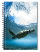 Pipe Turtle Glide Spiral Notebook