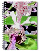 Pisgah Versicolor Spiral Notebook