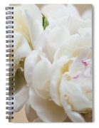 Pitcher Of Peonies Spiral Notebook