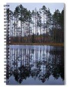 Pitkajarvi 4 Spiral Notebook