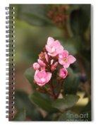 Pittosporum Pink 2 Spiral Notebook