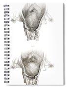 Placenta Previa, Illustration Spiral Notebook
