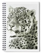 Placid Spiral Notebook