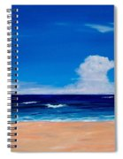 Placidity Spiral Notebook