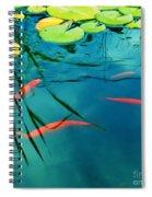 Plaisir Aquatique Spiral Notebook