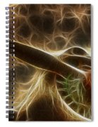 Plane Golden Fire Spiral Notebook
