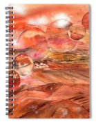 Planet Earth - Save Our Deserts Spiral Notebook