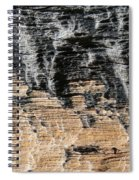 Planet Landing Spiral Notebook