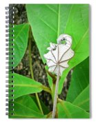 Plant Artwork Spiral Notebook