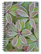 Plant Pattern Spiral Notebook