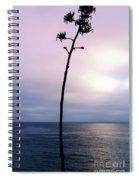 Plant Silhouette Over Ocean Spiral Notebook