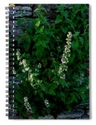 Plants Grow Anywhere Spiral Notebook