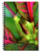 Plants In Hawaii Spiral Notebook