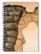 Plaster It Spiral Notebook