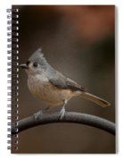 Plastic Wrapped Titmouse Spiral Notebook