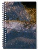 Platypus Spiral Notebook